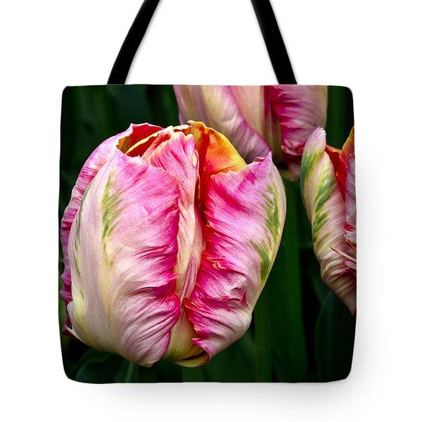 Tulips 02 Tote Bag