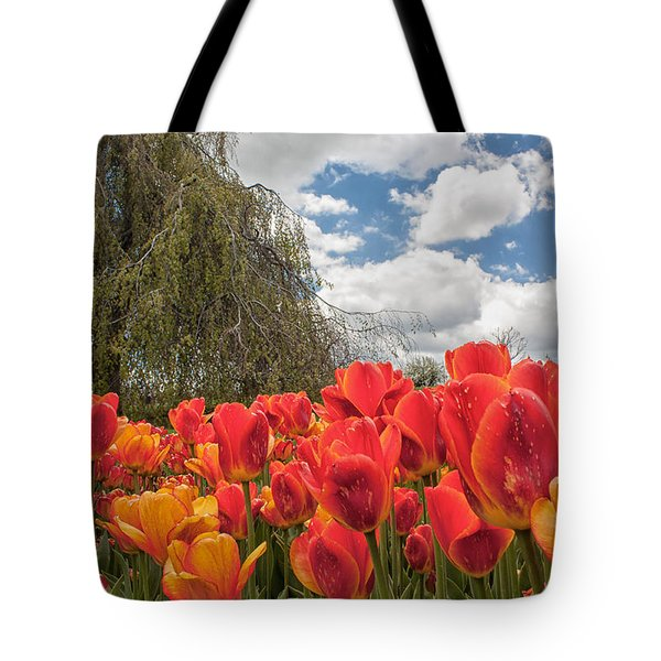 Tulips Tote Bag by Brian Caldwell