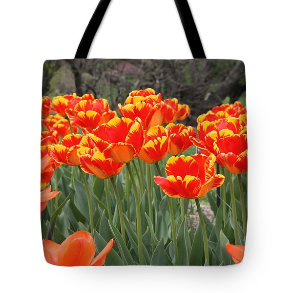 Tulips From Brooklyn Tote Bag by John Telfer
