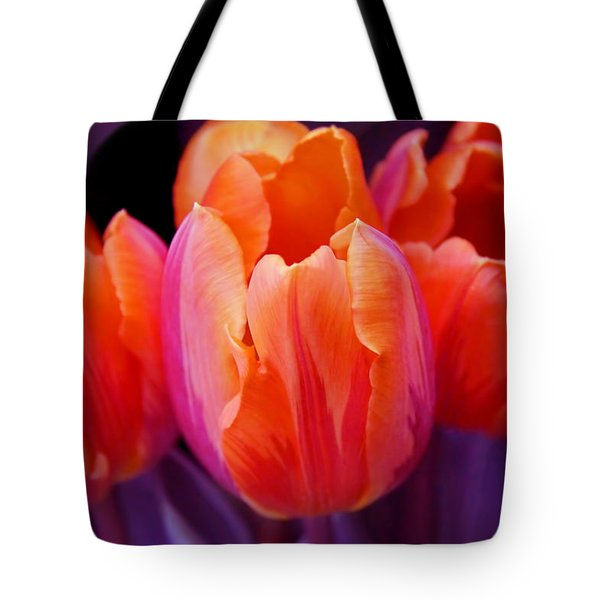 Tulips In Orange And Purple Tote Bag by Jennie Marie Schell