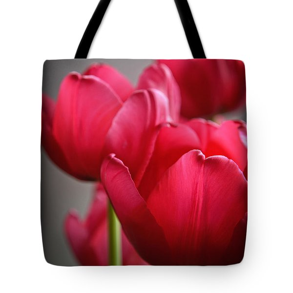 Tulips In The  Morning Light Tote Bag