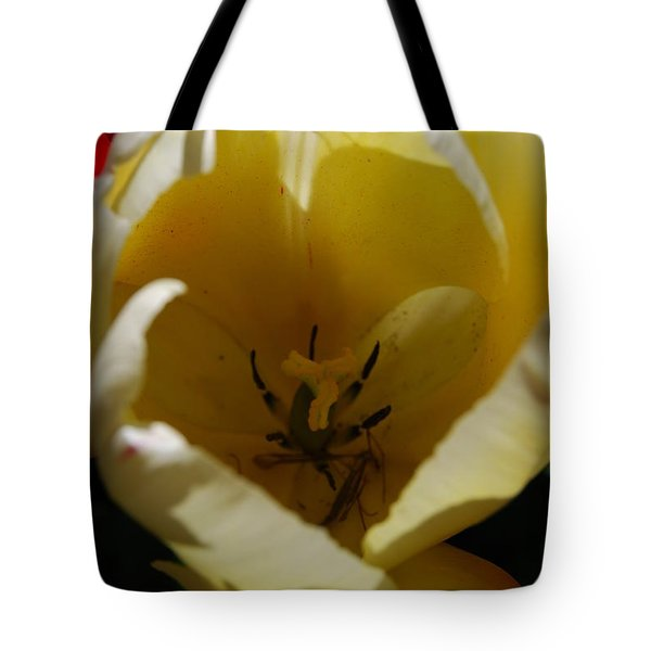 Tulip's Kiss Tote Bag by Jani Freimann