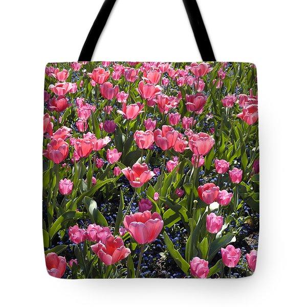 Tulips Tote Bag by Matthias Hauser