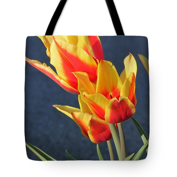 Tote Bag featuring the photograph Tulips by Todd Blanchard