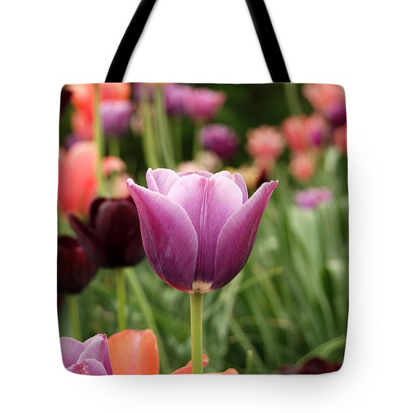 Tulips Welcome Spring Tote Bag by Eva Kaufman