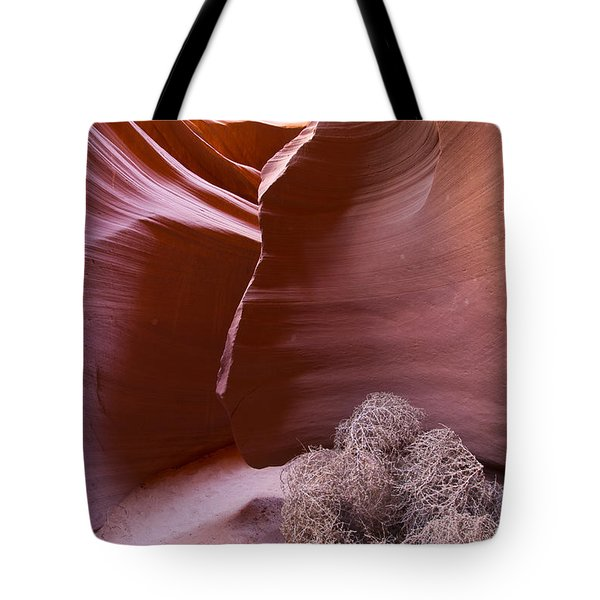 Tote Bag featuring the photograph Tumbleweed In The Canyon by Bryan Keil