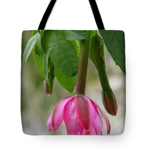 Tote Bag featuring the photograph Tumbo Blossom by Lew Davis