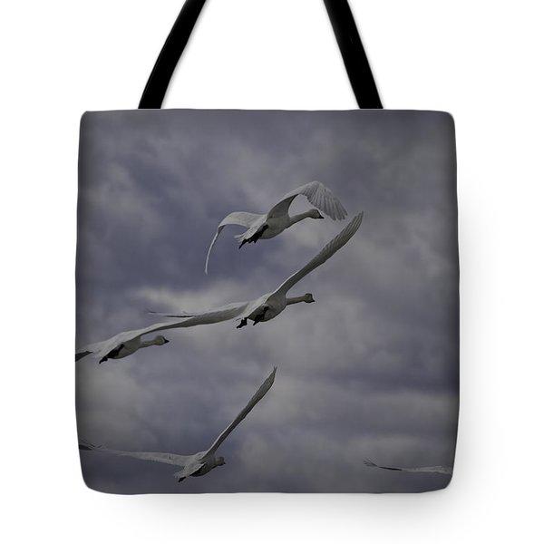 Tundra Swans Taking Flight 1 Tote Bag