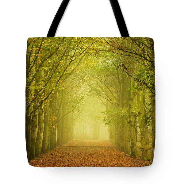 Tunnel Of Light In A Forest Of Trees Tote Bag