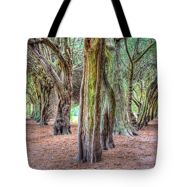 Tunnels Of The Intertwined Tote Bag by Semmick Photo