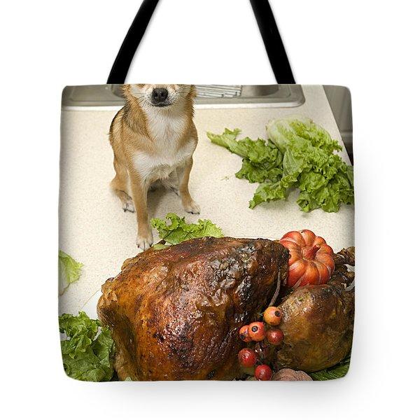 Turkey And Dog Tote Bag