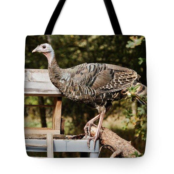 Turkey Antics Tote Bag by VLee Watson