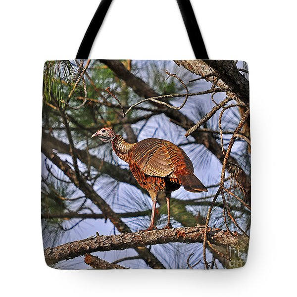 Turkey In A Tree Tote Bag by Al Powell Photography USA