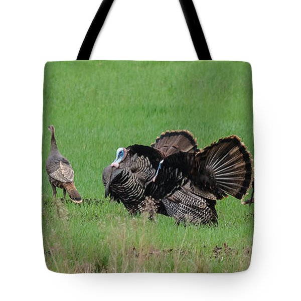 Turkey Mating Ritual Tote Bag