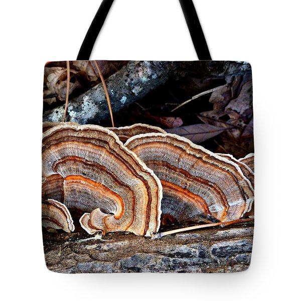 Turkey Tail Fungi In Autumn Tote Bag