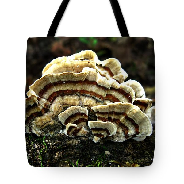 Turkey Tail Fungi Tote Bag