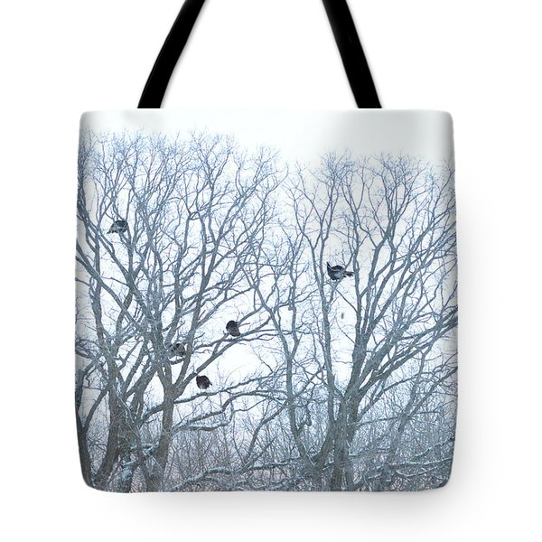 Tote Bag featuring the photograph Turkey Tree by Dacia Doroff