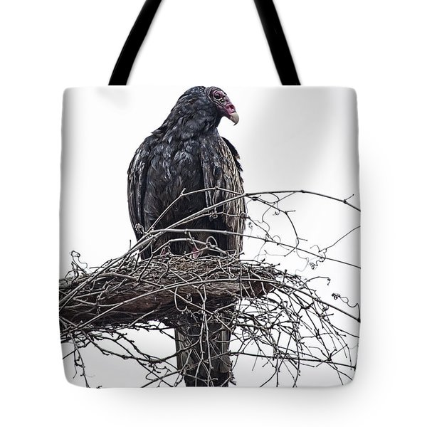 Turkey Vulture Tote Bag by Douglas Barnard