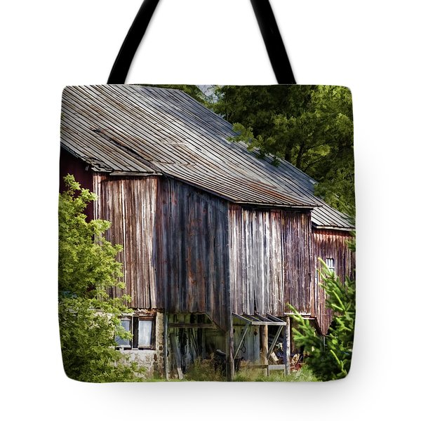 Turn Your Face To The Sun Tote Bag by Joan Carroll