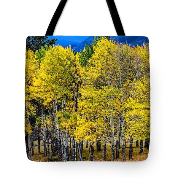 Turning Of The Aspens Tote Bag