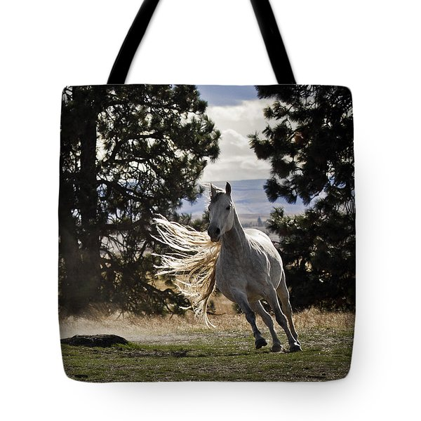 Turning On A Dime Tote Bag