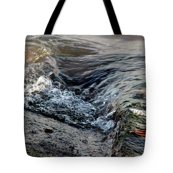 Turnstone By The Water Tote Bag
