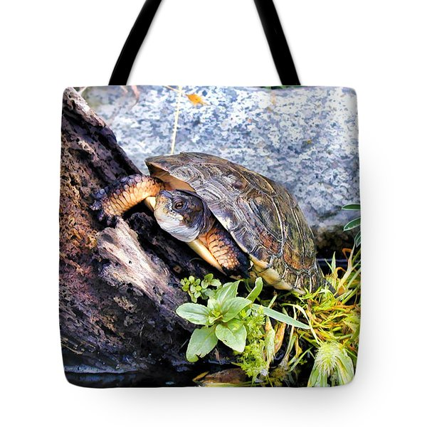Tote Bag featuring the photograph Turtle 1 by Dawn Eshelman