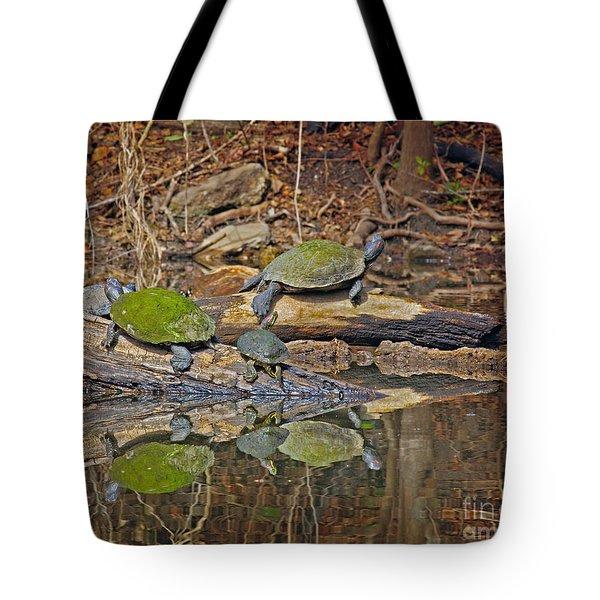 Turtle Trio Tote Bag