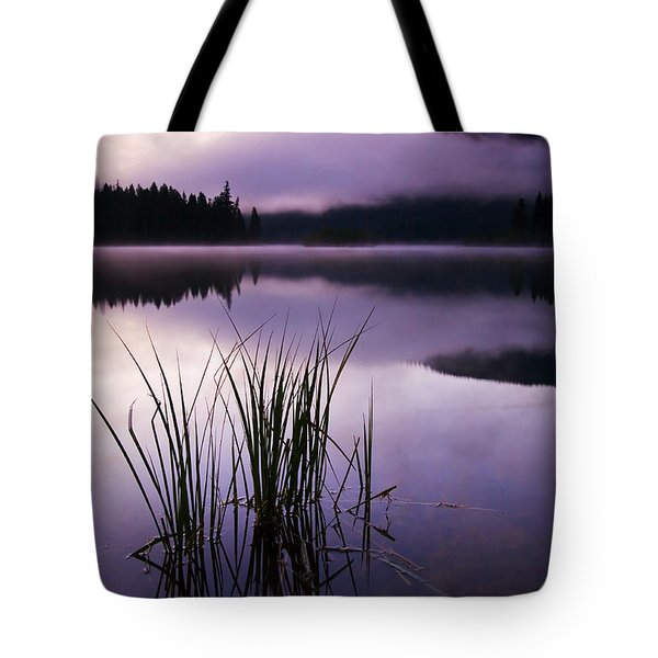 Twilight Glow Tote Bag by Mike  Dawson