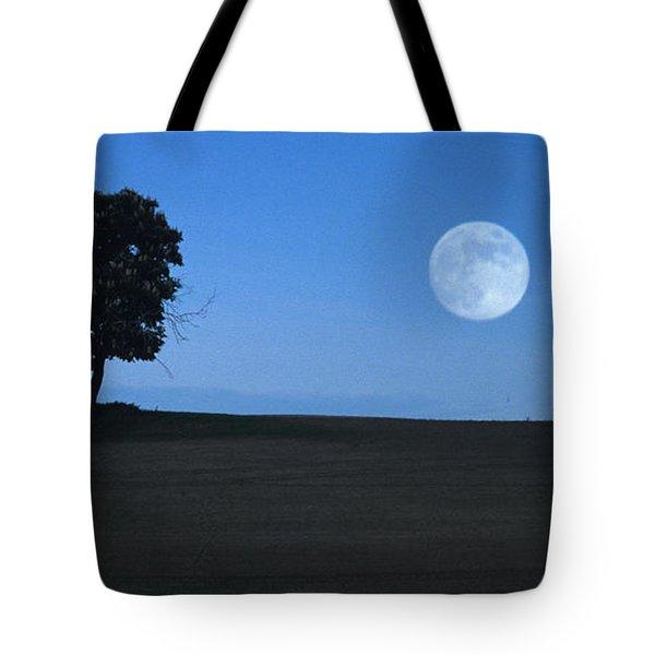 Twilight Solitude Tote Bag by Sharon Elliott
