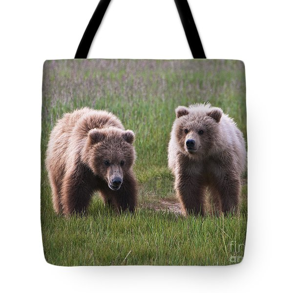 Twin Bear Cubs Tote Bag