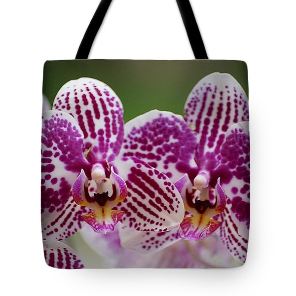 Twin Beauty Tote Bag by Blair Wainman