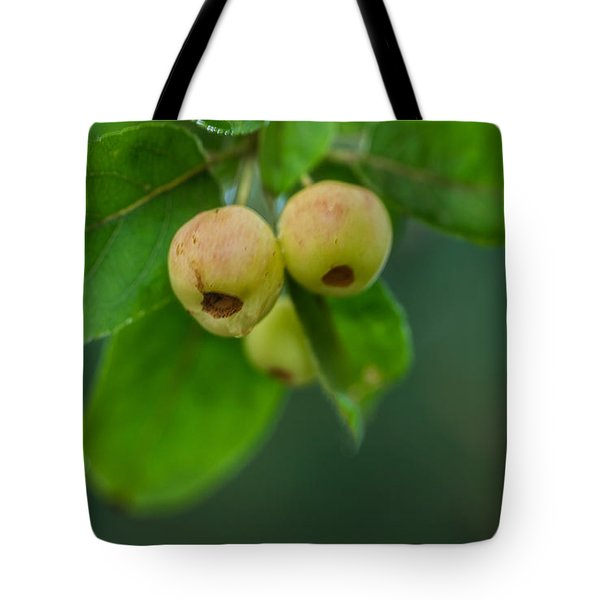 Tote Bag featuring the photograph Twin Berries by Jacqui Boonstra