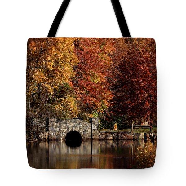Twin Brooks Tote Bag by Karol Livote