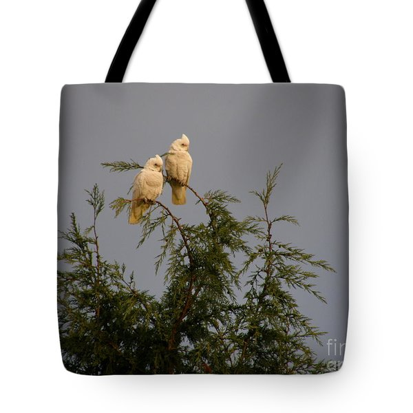Twin Cockatoos Tote Bag by Bev Conover