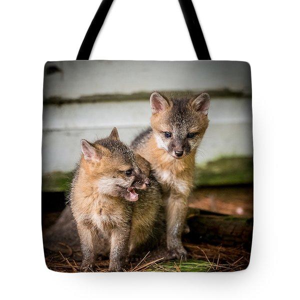 Twin Fox Kits Tote Bag by Paul Freidlund