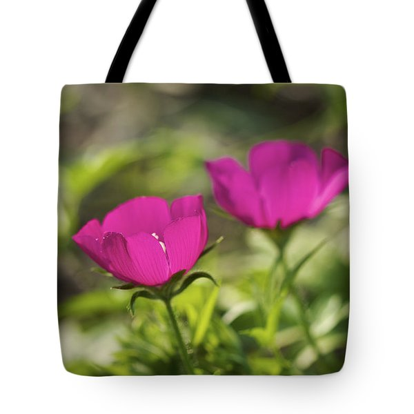 Tote Bag featuring the photograph Twin Poppies - Poppy Mallow Art Print by Jane Eleanor Nicholas