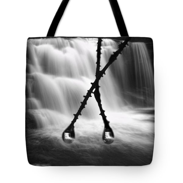 Twin Reflections Tote Bag by Dan Friend
