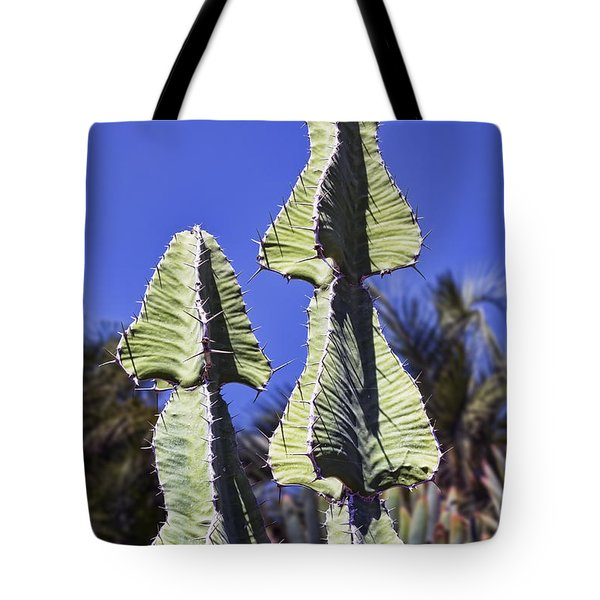 Twin Towers Tote Bag by Kelley King