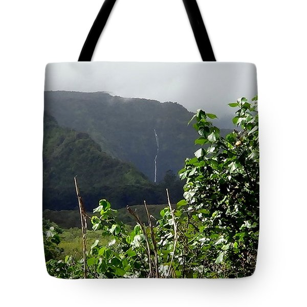 Tote Bag featuring the photograph Twin Waterfalls by Fred Wilson