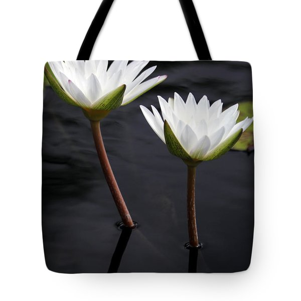 Twin White Water Lilies Tote Bag by Sabrina L Ryan
