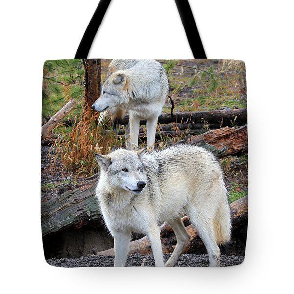 Tote Bag featuring the photograph Twin Wolves by Athena Mckinzie