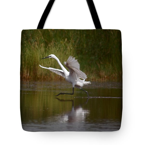 Tote Bag featuring the photograph Twinkle Toes by Leticia Latocki