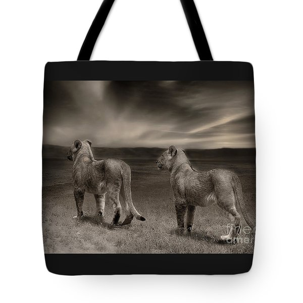 Tote Bag featuring the photograph Twins 2 by Christine Sponchia