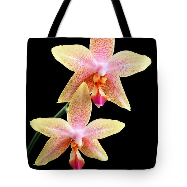 Twins Tote Bag by Bill Morgenstern