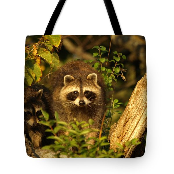 Tote Bag featuring the photograph Twins by James Peterson