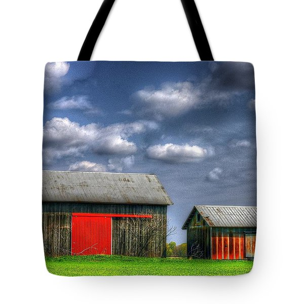 Twins Tote Bag by Randy Pollard
