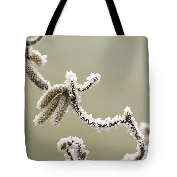 Twisted Frost Tote Bag by Anne Gilbert