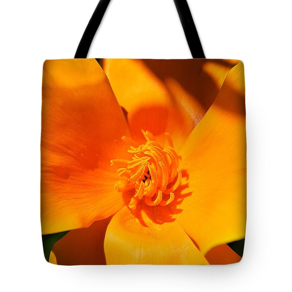Twisted And Shadows Tote Bag by Felicia Tica