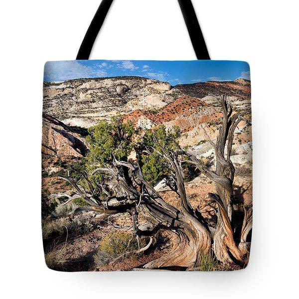 Twisted Snag Tote Bag